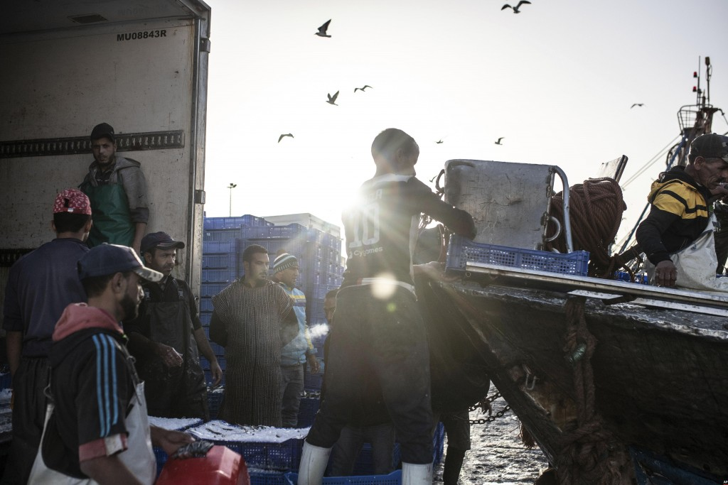 Fishermen transport their catch after docking in the main port in Dakhla city, Western Sahara, Monday, Dec. 21, 2020 U.S. plans to open a consulate in...