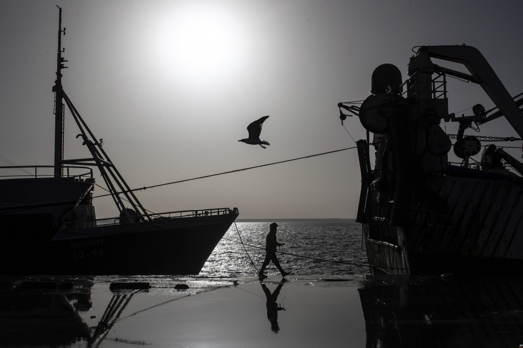 A seagull flies while a worker walks past a fishing vessel docked in the main port in Dakhla city, Western Sahara, Monday, Dec. 21, 2020. U.S. plans t...
