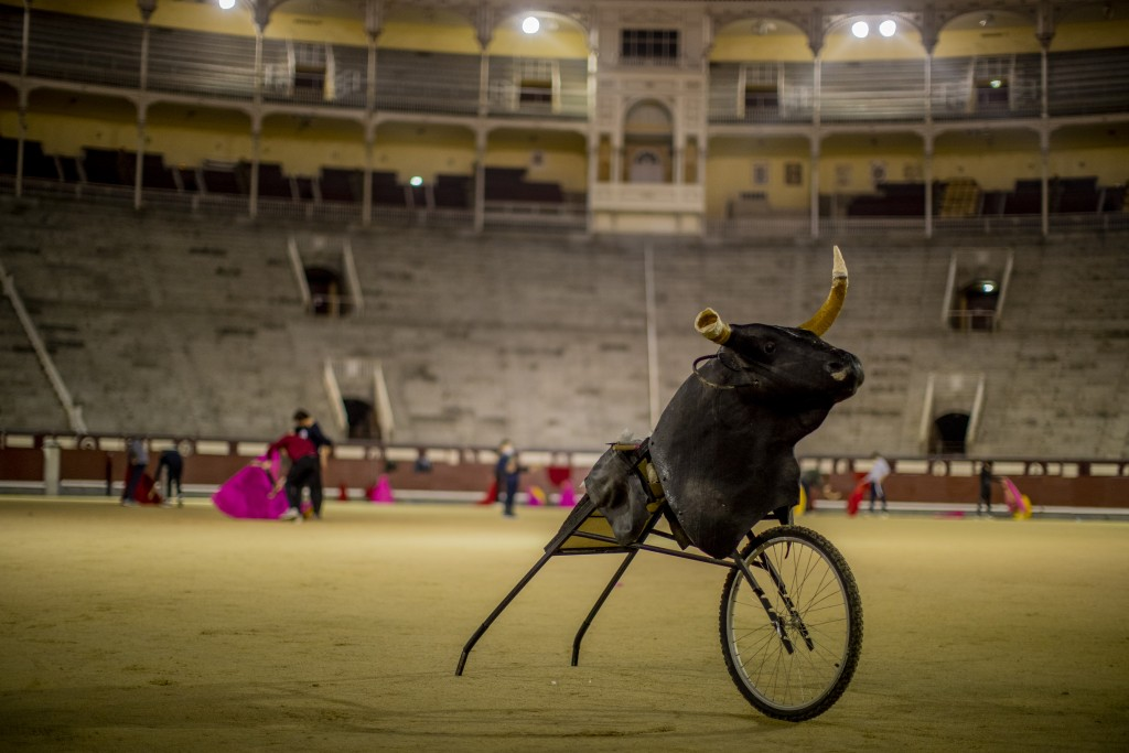 A 'Carreton' (bulls horns attached to a metal frame with wheels) is pictured as pupils practice at the Bullfighting School at Las Ventas bullring in M...