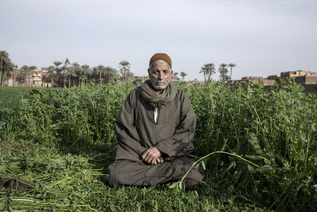 Yassin Saeed 76, an Egyptian farmer sits on a plot of land in the town of Atfih, Giza, Egypt, Tuesday, Jan. 12, 2021. Saeed remembers when the Nile's ...