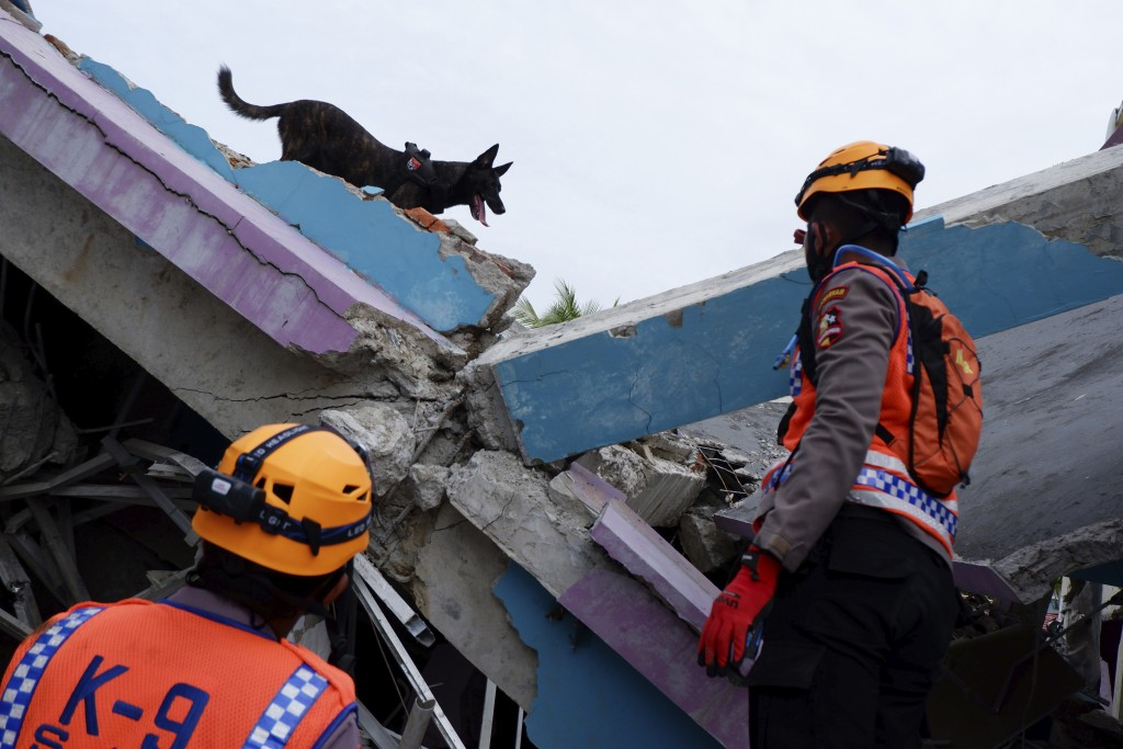 Rescuers use a sniffer dog during a search operation at the ruins of a building collapsed in Friday's earthquake in Mamuju, West Sulawesi, Indonesia, ...