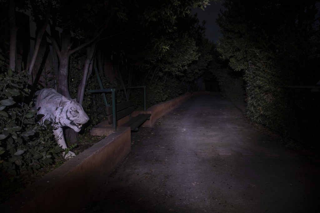 An effigy of a white tiger peers from a hedge at the Attica Zoological Park in Spata, near Athens, on Thursday, Jan. 21, 2021. (AP Photo/Petros Gianna...