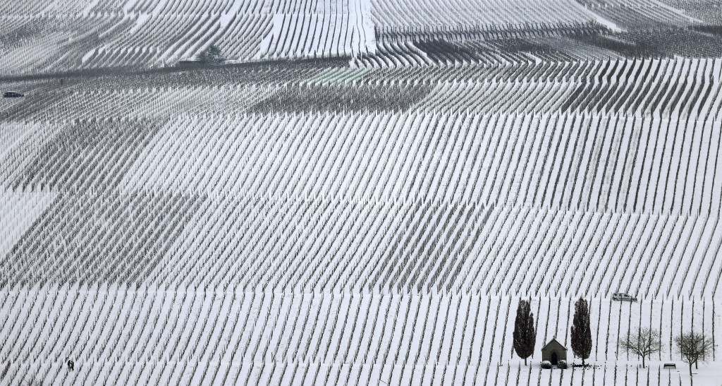 Two people work in a snow-covered vineyard at the Mainschleife area near Nordheim, Germany, Monday, Feb. 8, 2021. Parts of Germany are hit by strong w...