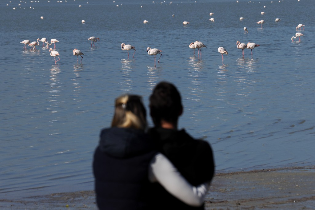 A couple stand at the edge of the salt lake and watch the flamingos, in the background, in southern coastal city of Larnaca, in the eastern Mediterran...