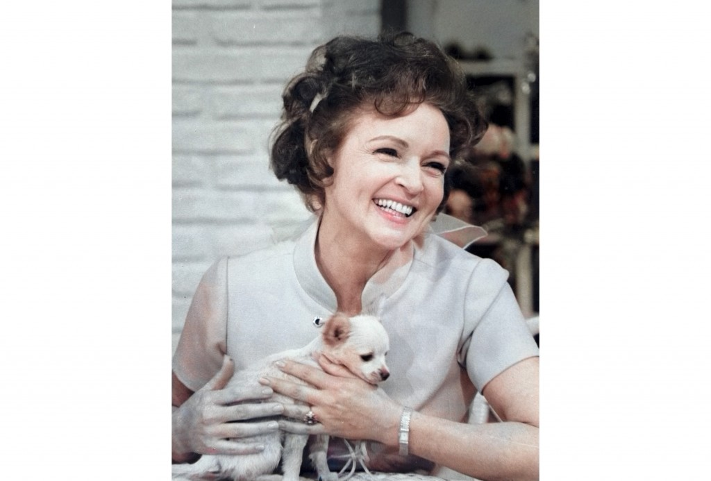 """This colorized image released by Margate And Chandler, Inc. shows actress and animal activist Betty White with a puppy from her 1970s series """"The Pet ..."""