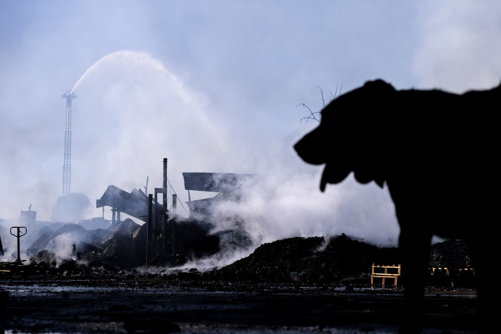A dog, silhouetted, is seen as firefighters battle a fire at a commercial yard in Compton, Calif., on Friday, Feb. 26, 2021. A huge fire visible acros...