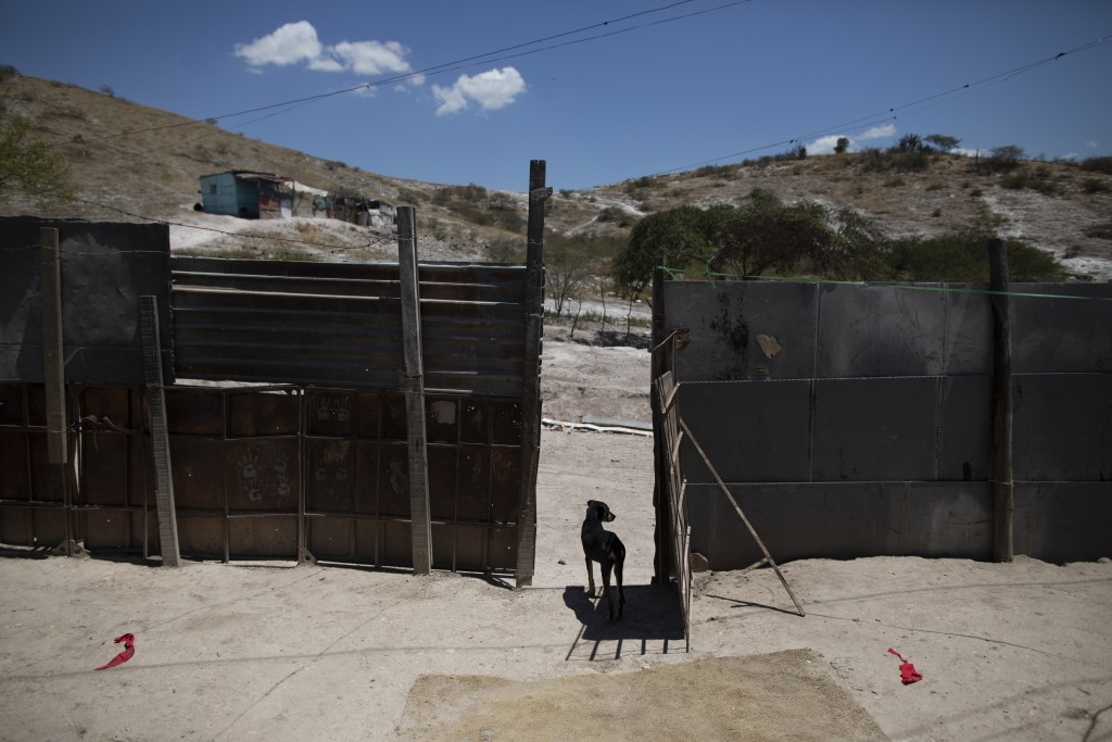The Brito family dog looks out of the entrance of their home near the Pavia garbage dump where they search for things to sell on the outskirts of Barq...