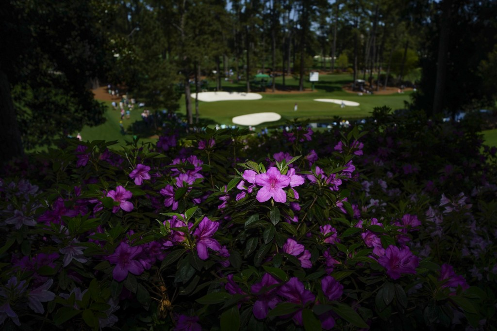 Azaleas frame 16th Green during a practice round for the Masters golf tournament on Monday, April 5, 2021, in Augusta, Ga. (AP Photo/Matt Slocum)