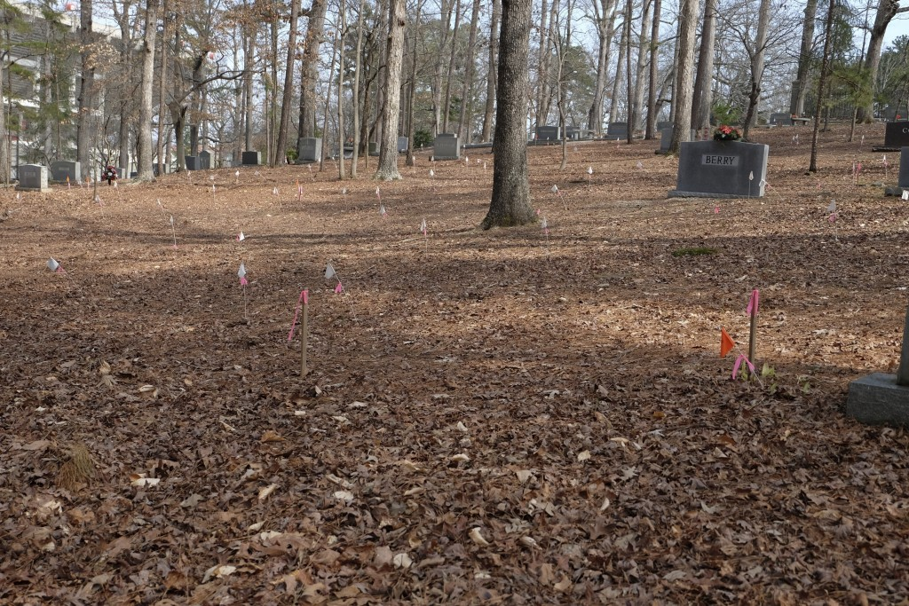 White and pink flags at Woodland Cemetery in Clemson, S.C. on Sunday, Feb. 28, 2021 show the locations of previously unmarked graves likely belonging ...