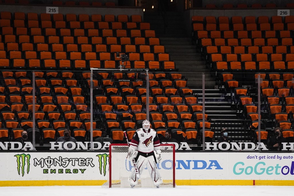FILE - Arizona Coyotes goaltender Adin Hill guards his net with empty seats behind him during the first period of an NHL hockey game against the Anahe...