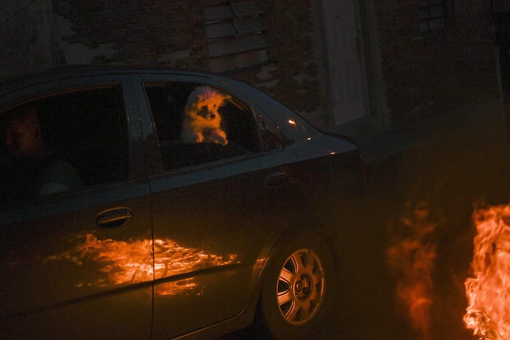 A dog inside a car watches a burning effigy representing Judas Iscariot during Holy Week in the Catia neighborhood of Caracas, Venezuela, Sunday, Apri...