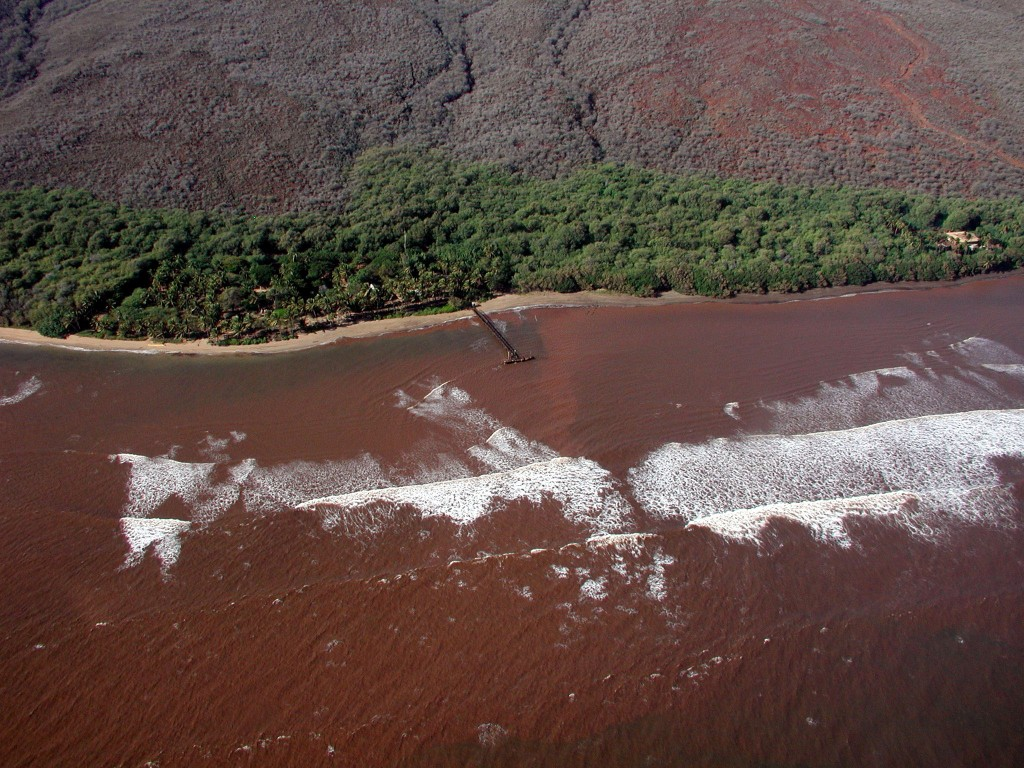 In this Nov. 23, 2003, photo provided by Ku'ulei Rodgers, muddy floodwater flows over a nearshore coral reef off the Hawaiian Island of Lanai after a ...
