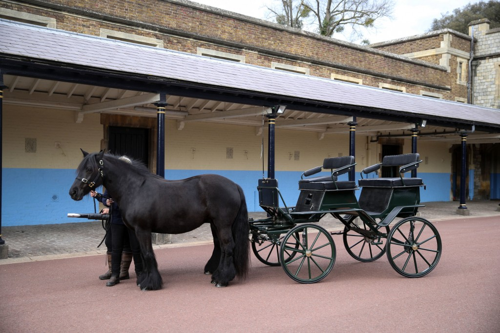 Britain's Prince Philip The Duke of Edinburgh's driving carriage and his two Fell ponies, named Balmoral Nevis and Notlaw Storm, pictured at Windsor C...