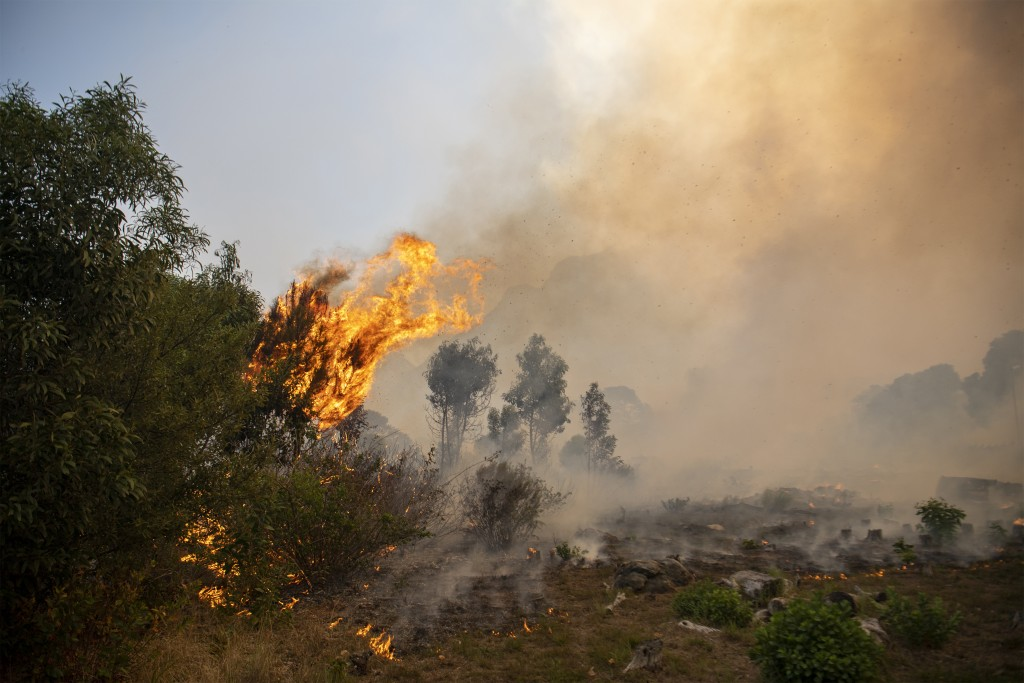 A fire rages out of control on the slopes of Table Mountain in Cape, South Africa, Sunday, April 18, 2021. A wildfire raging on the slopes of the moun...