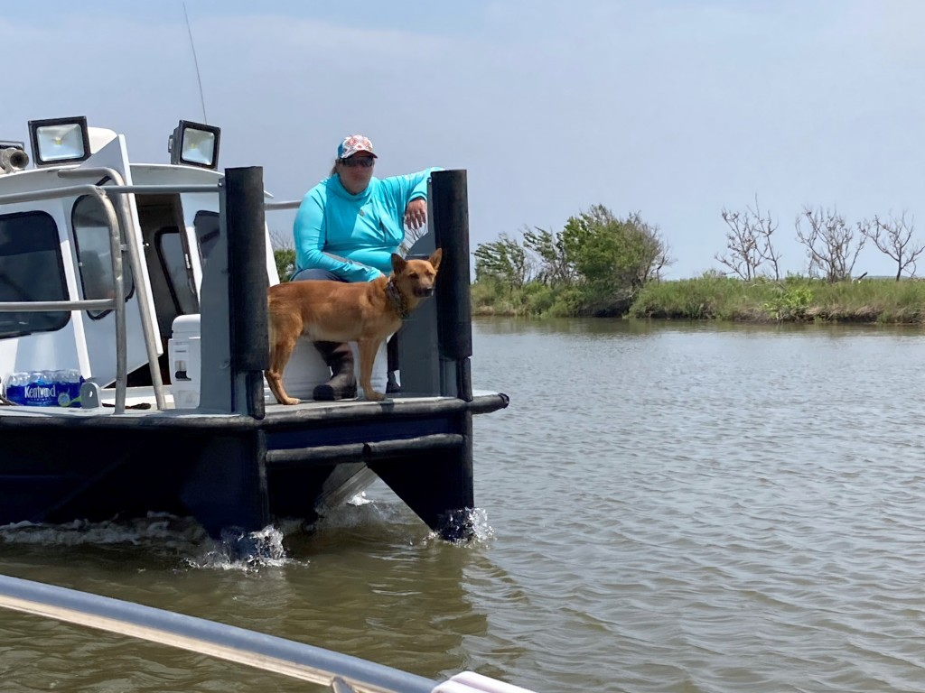 A volunteer and a dog trained to search for cadavers join others looking for survivors of the Seacor Power, a lift boat that capsized on April 13 off ...