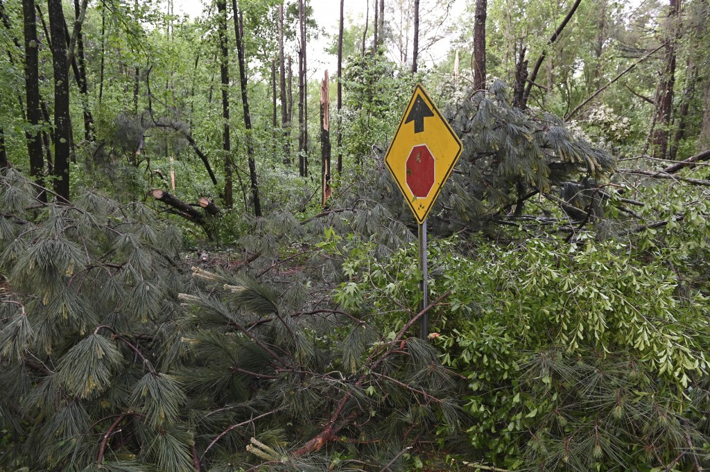 Downed trees cover Oakview Drive in Tupelo, Miss., Monday, May 3, 2021. A line of severe storms rolled through the state Sunday afternoon and into the...