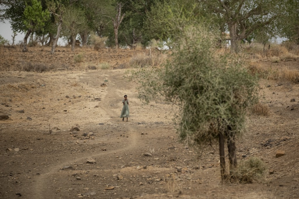 A girl walks along a path off the main road near Danshe, a town in an area of western Tigray annexed by the Amhara region during the ongoing conflict,...