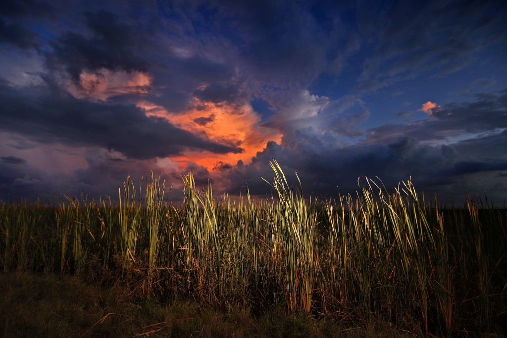 FILE - In this Oct. 20, 2019 photo, a clearing late-day storm adds drama in the sky over a sawgrass prairie in Everglades National Park in Florida.  T...