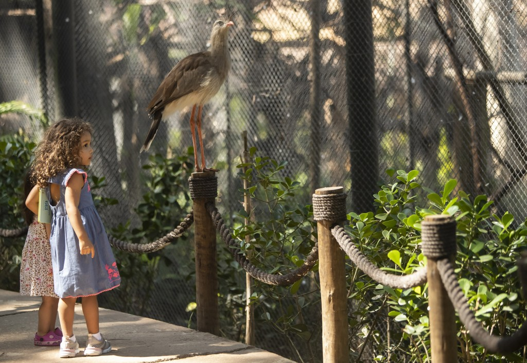 Children visit the aviary at BioParque, in Rio de Janeiro, Brazil, Wednesday, May 5, 2021. BioParquereopened to the public in March, after privatizat...