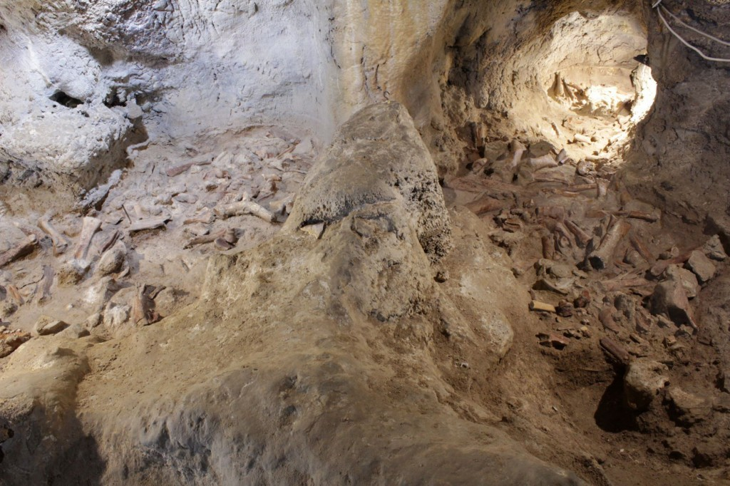 This image released by the Italian Culture Ministry shows a cave near Rome where fossil findings were discovered, shedding new light on how the Italia...