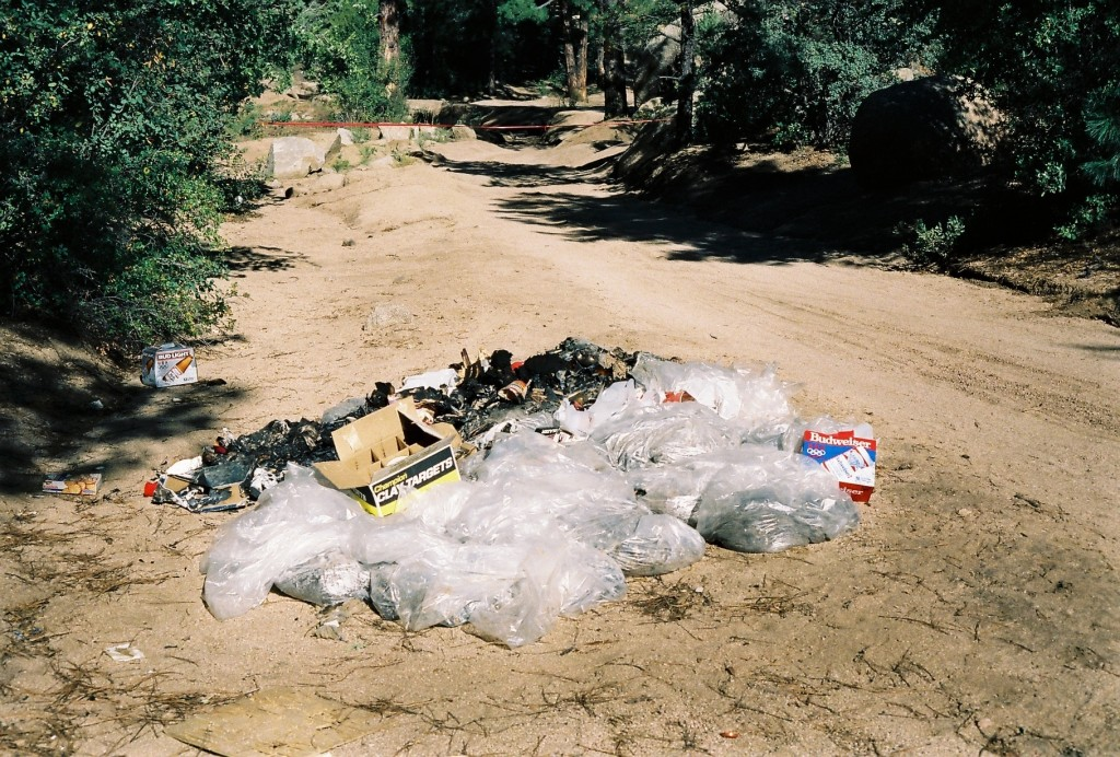This undated photo provided by the Yavapai County Sheriff's Office shows the site outside Prescott, Arizona, where Pamela Pitts' body was found in 198...