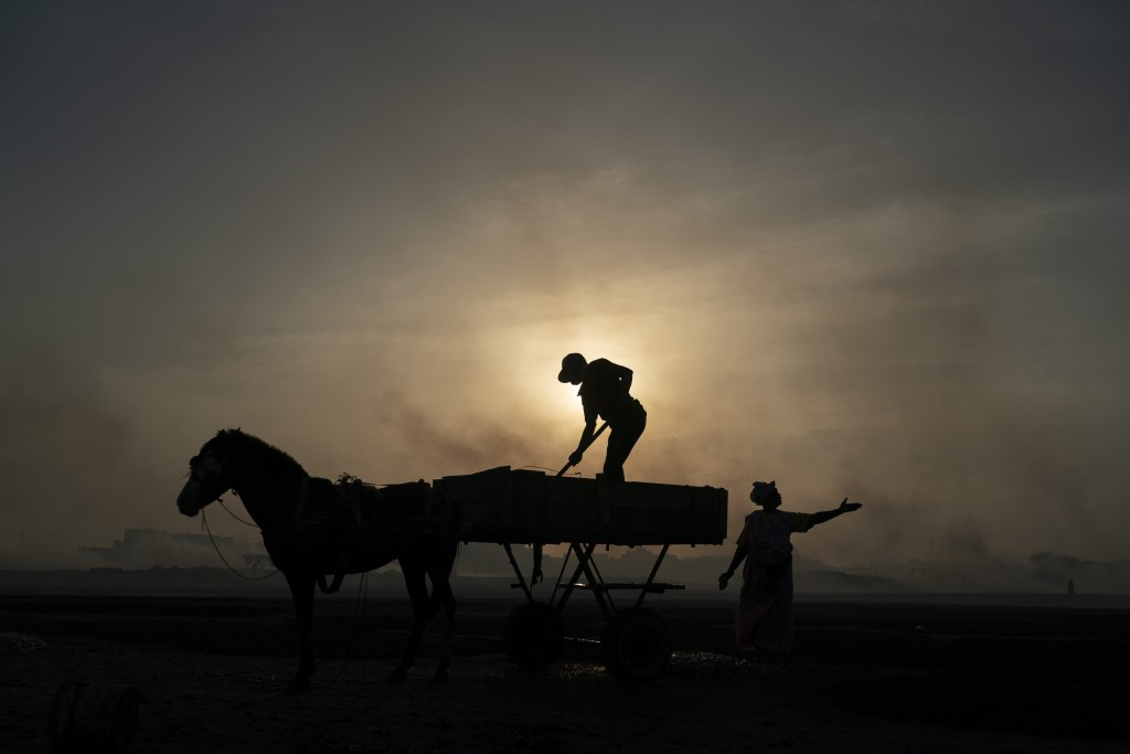 A woman gestures as a man unloads his horse-drawn cart of the catch brought by fishermen at Bargny beach, some 35 kilometers (22 miles) east of Dakar,...