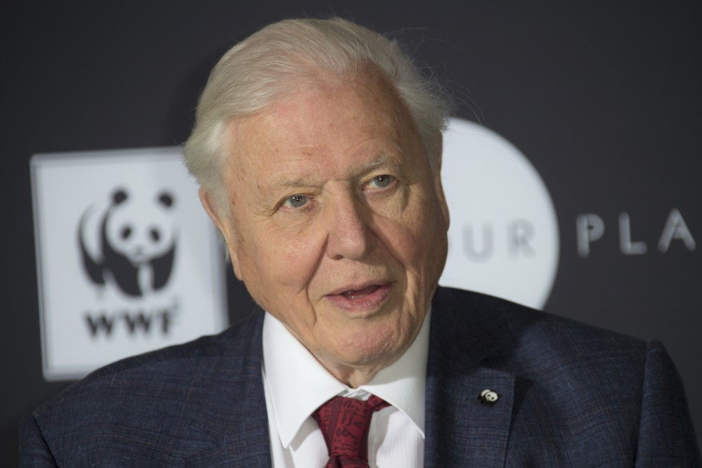 FILE - In this Thursday, Nov 8, 2018 file photo, Sir David Attenborough poses for photographers at Westminster Central Hall, London. Veteran British b...