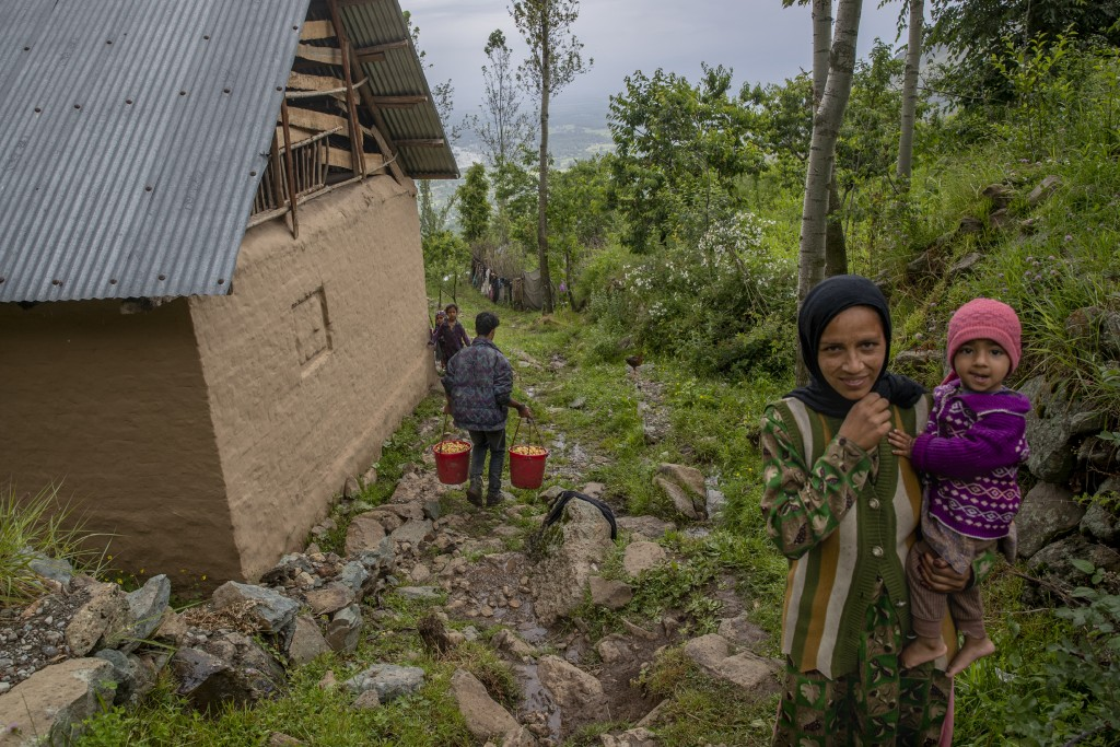 A Kashmiri farmer walks carrying cherries freshly plucked from a nearby orchard as a Kashmiri woman and her child react to the camera in Waliwar villa...