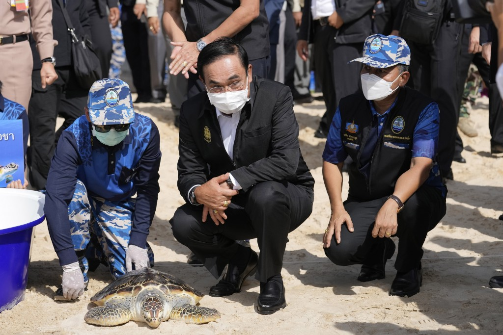 Thailand's Prime Minister Prayuth Chan-ocha releases a green turtle into the sea as a part of activities during his visit of Phuket sandbox at Sirinat...