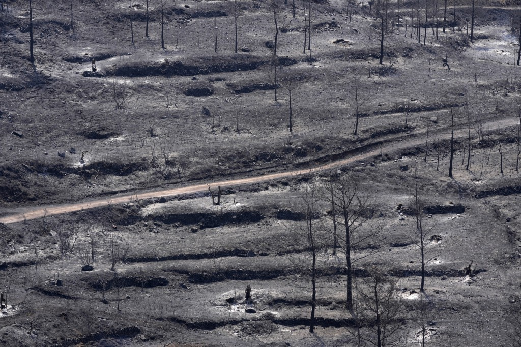 Burned trees are seen on Troodos mountain, in Ora village, southwestern Cyprus, Sunday, July 4, 2021. Cyprus search crews discovered the bodies of fou...