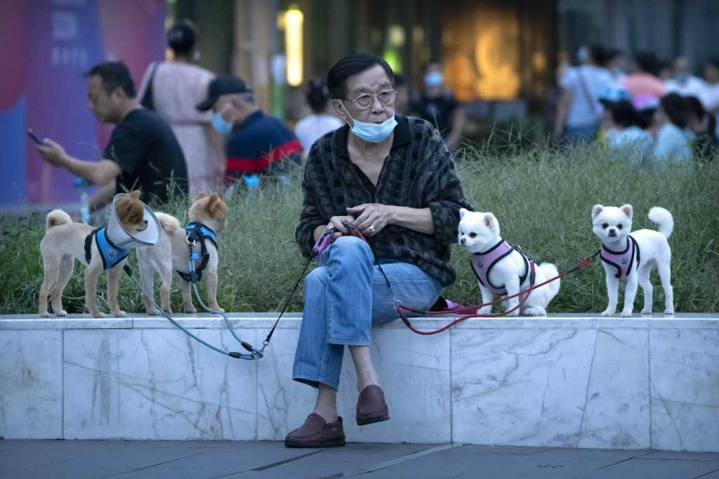 A man wearing a face mask to protect against COVID-19 sits with dogs on leashes near a neighborhood with a suspected coronavirus case in Beijing, Wedn...