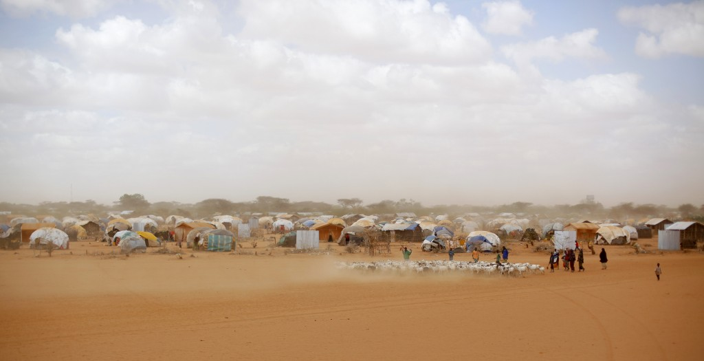 FILE - In this Aug. 7, 2011 file photo, Somali refugees herd their goats at the Ifo refugee camp outside Dadaab, eastern Kenya, 100 kilometers (62 mil...