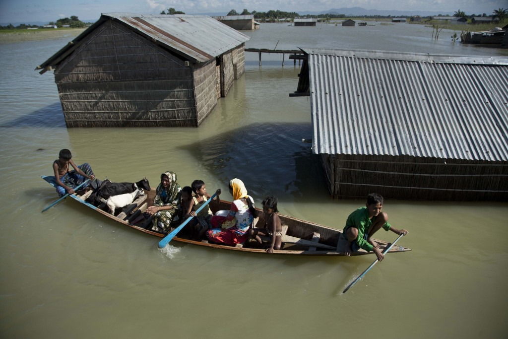 FILE - In this July 31, 2016, file photo, a flood-affected family with their goats travel on a boat in the Morigaon district, east of Gauhati, northea...