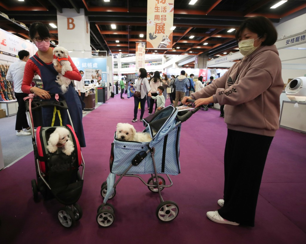 Pet owners with strollers carrying their dogs at Taipei International Pet Product Exhibition in February.