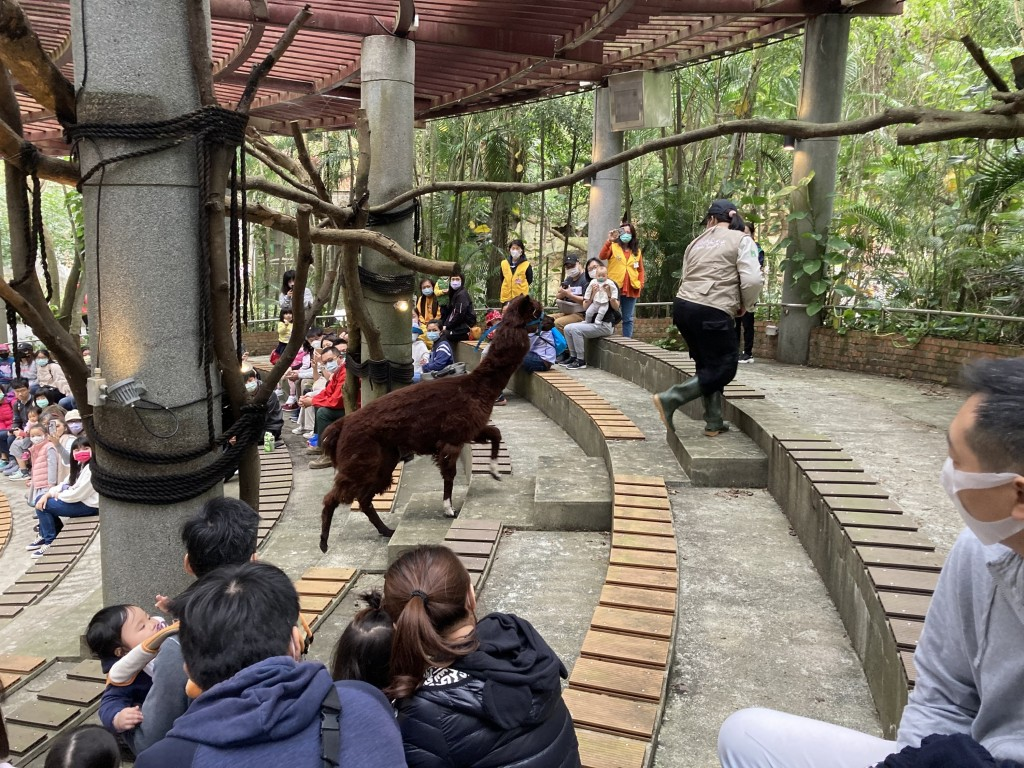 Session at Animal Behavior Academy atTaipei Zoo