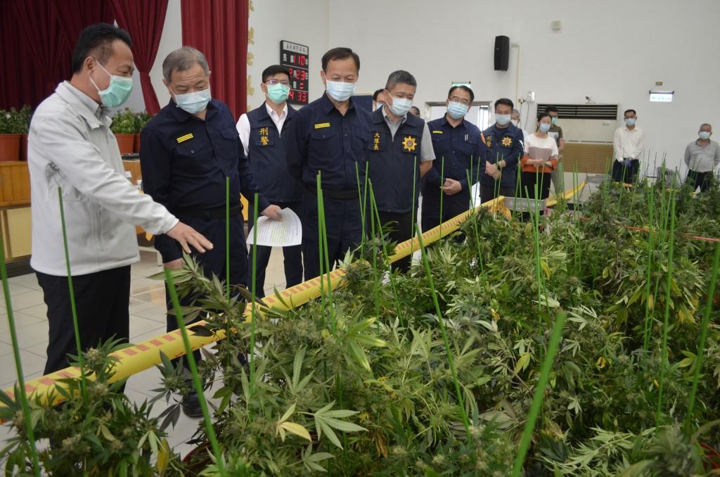 Police make largest marijuana grow-op bust in Taiwan's history