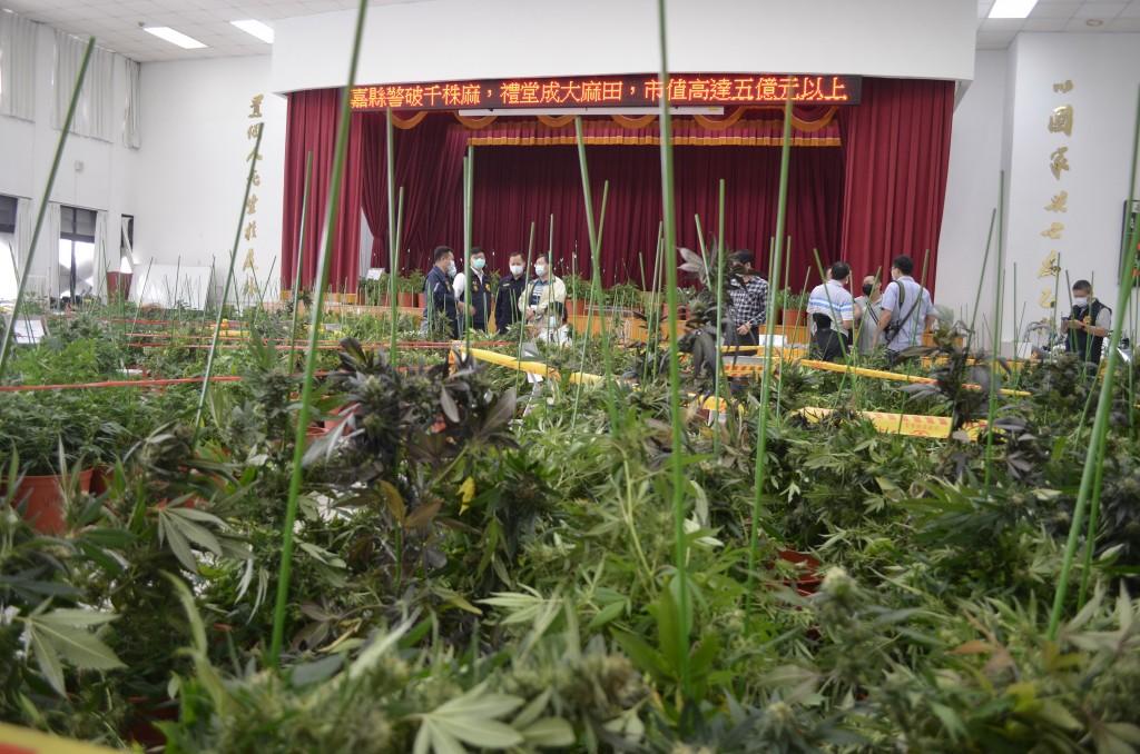 Police seize 1,648 marijuana plants.