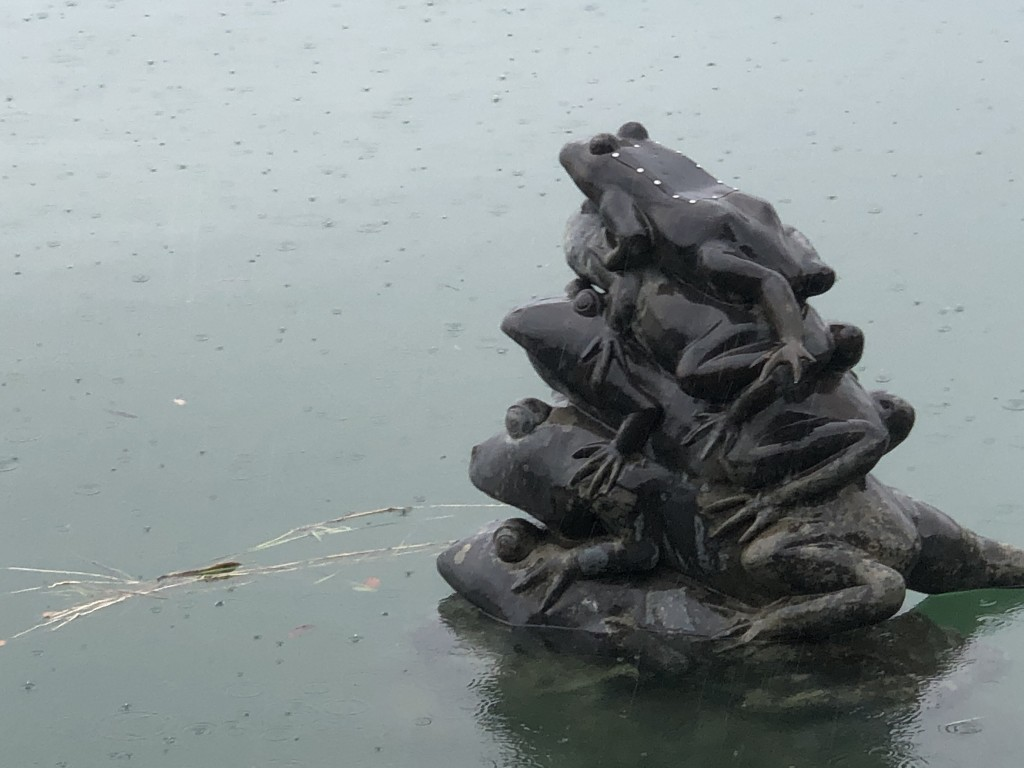 Photo of the Day: Water level reaches top frog at Taiwan's Sun Moon Lake
