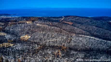 Greek authorities are scrutinizing the management of the devastating wildfires