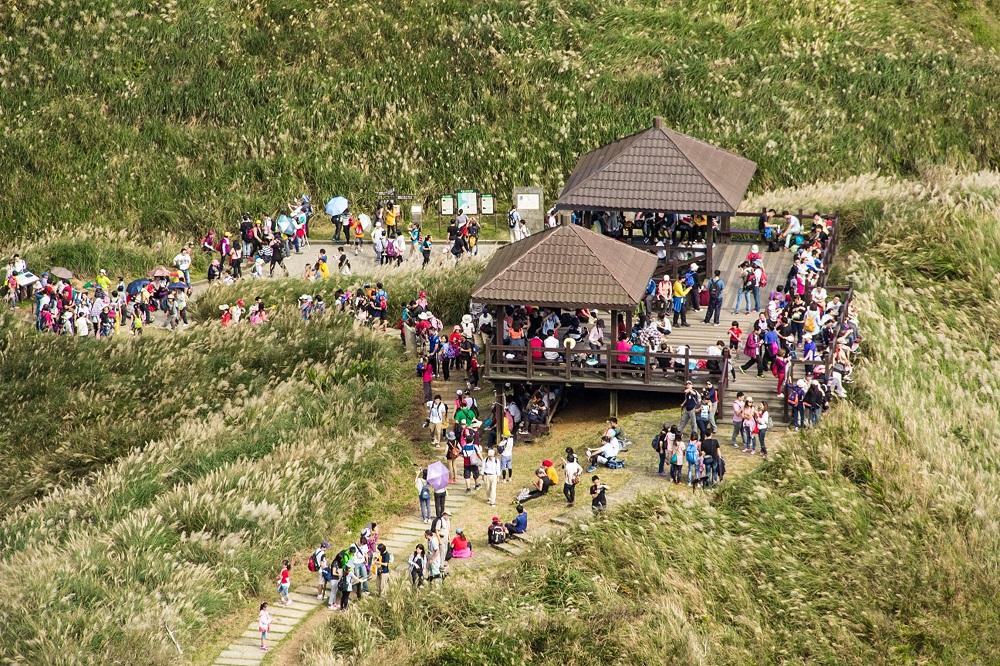 Caoling Historic Trail Silver Grass festival runs till Nov. 27