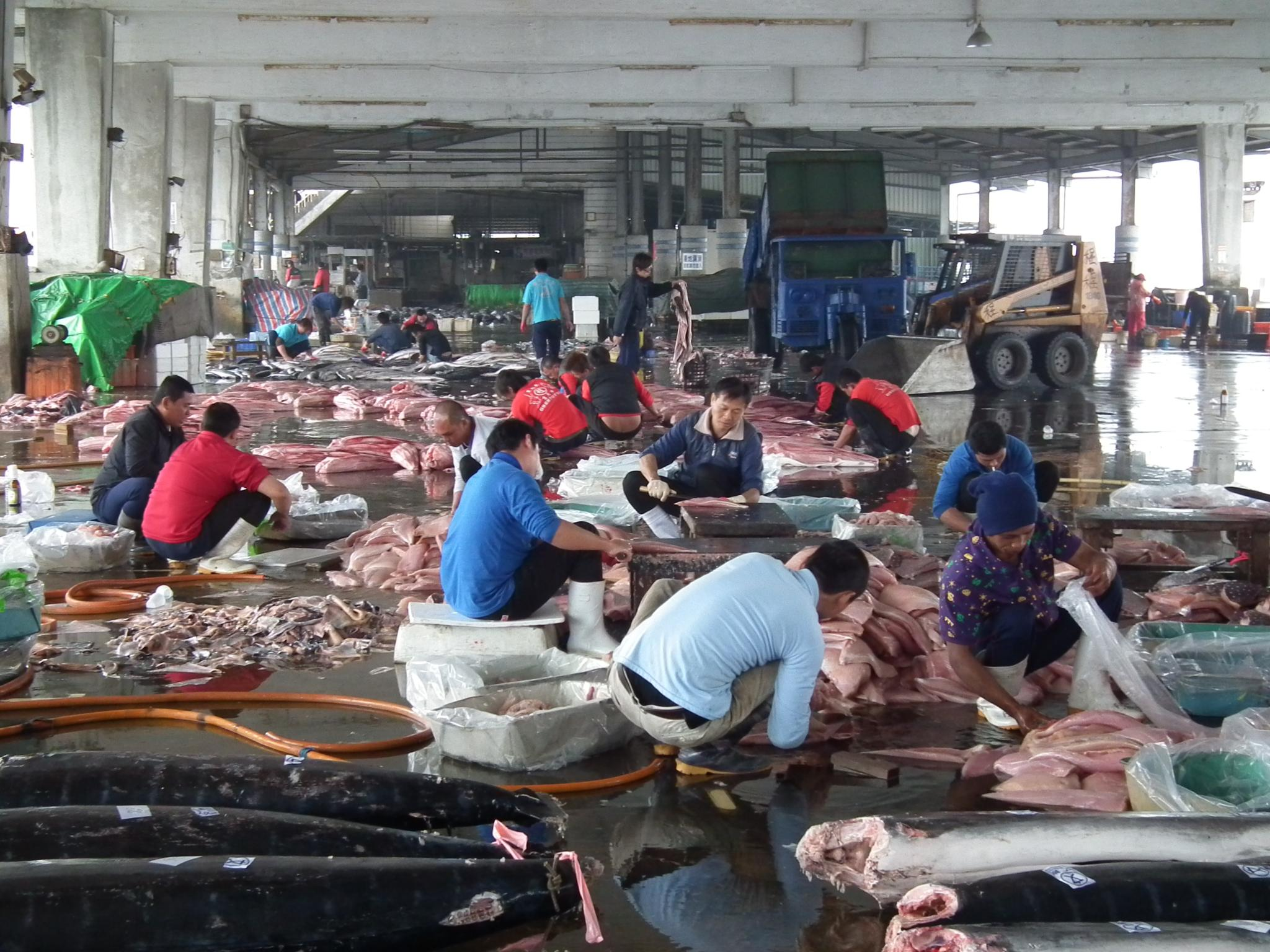 Workers clean fish at Donggang Port (Photo by Michael Turton)