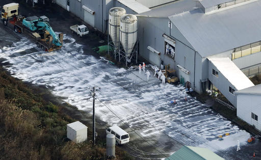 Japan culling poultry after bird flu outbreak
