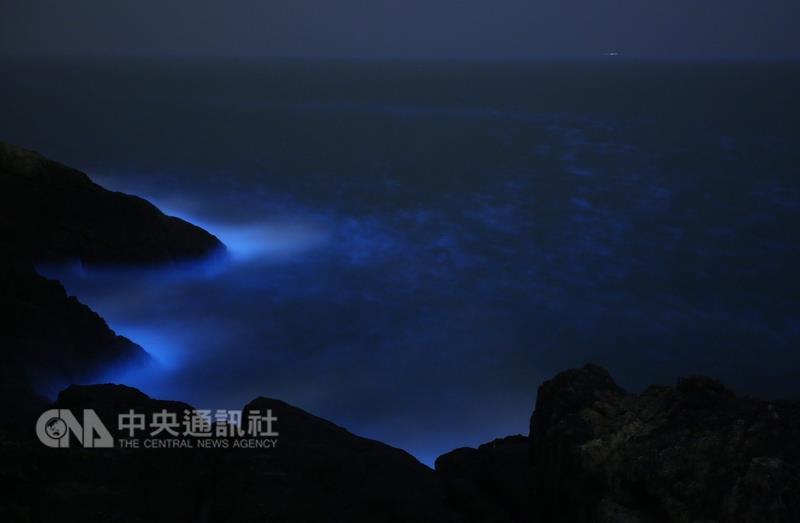 Une découverte sur la reproduction des larmes bleues de Matsu