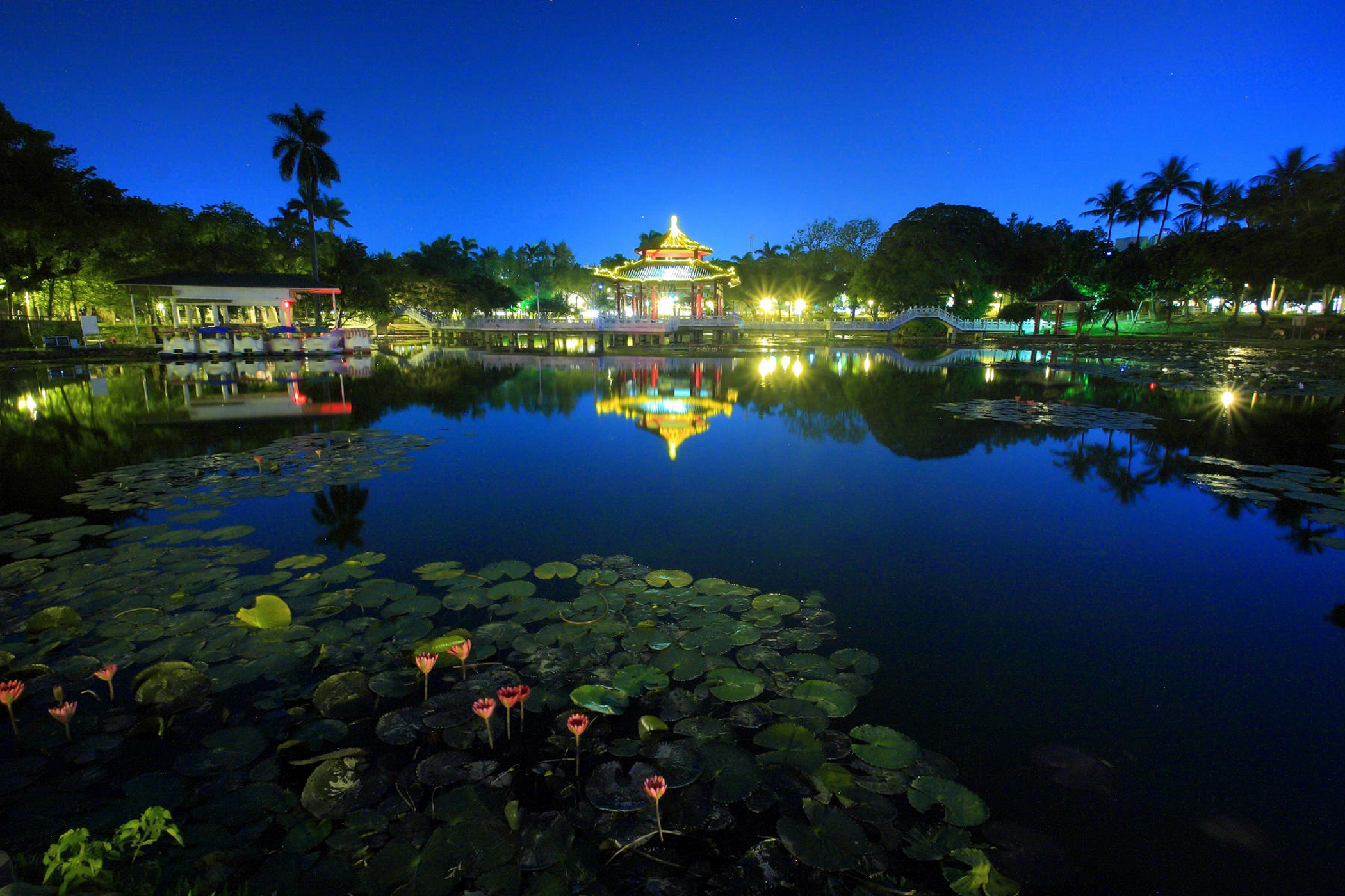 A nighttime view of Tainan Park.
