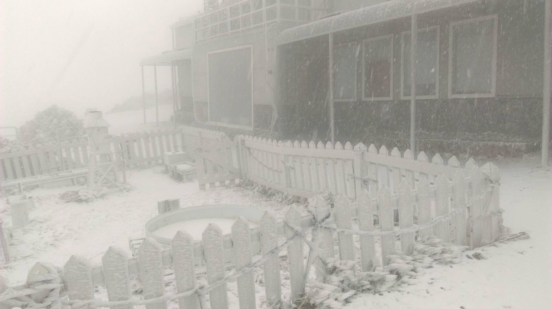 冷氣團水氣豐沛  玉山、合歡山降雪