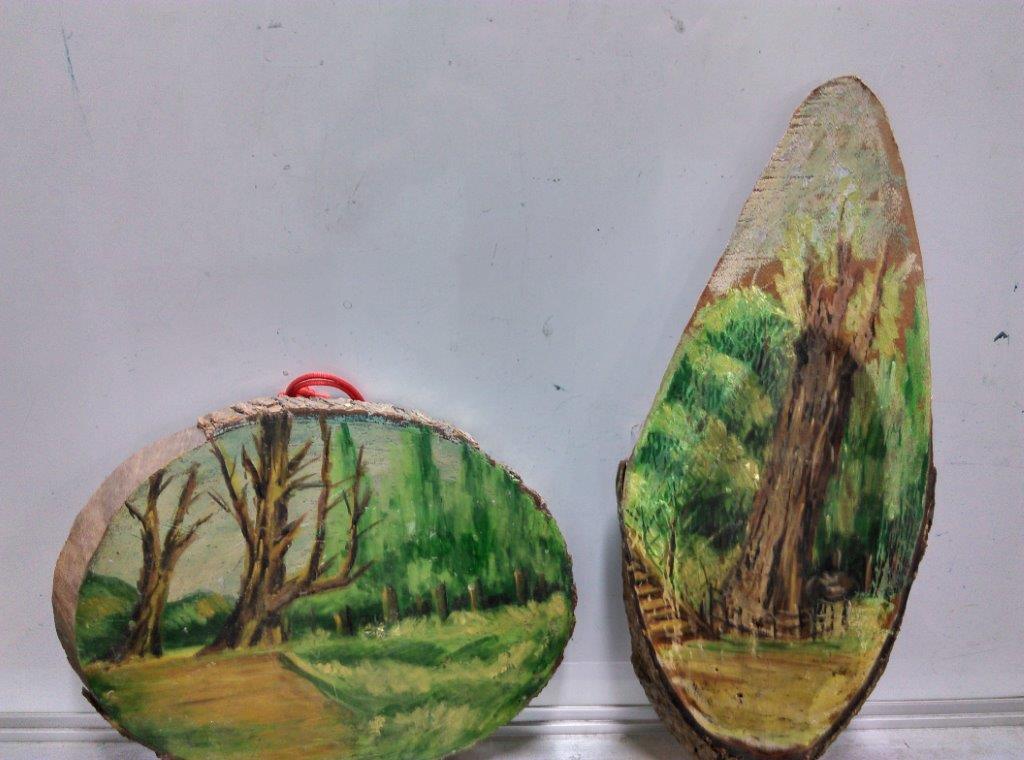林務局森林遊樂區、平地森林遊樂區及自然教育中心提供豐富DIY和活動。(照片由林務局提供)