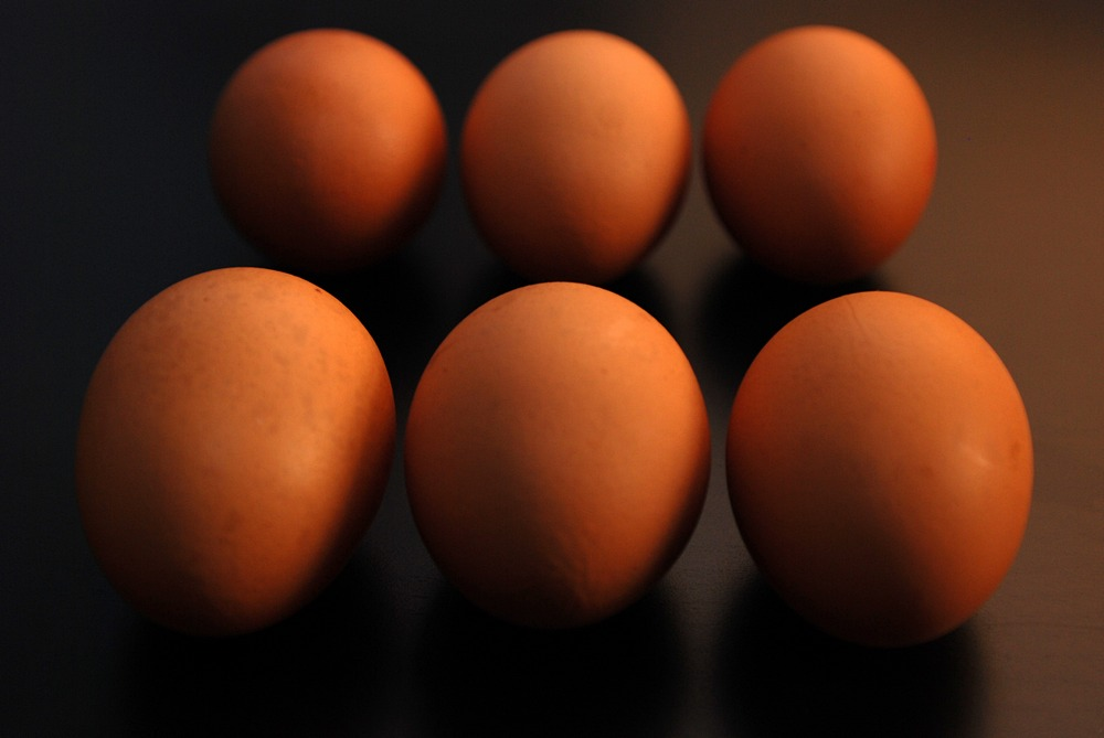 Taiwan FDA finds dioxin in eggs from Changhua County