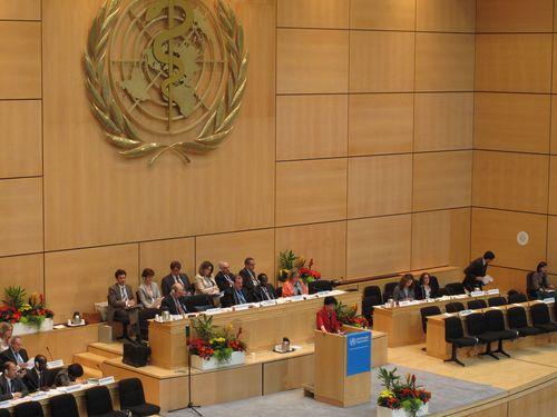 世界衛生大會(World Health Assembly)會議情形