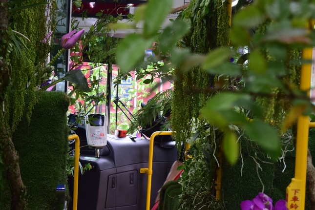 """Zip around the streets of Taipei in a """"forest bus"""""""