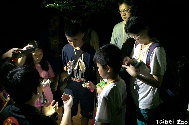 Taipei Zoo will host a series of summer camps for the upcoming summer vacation, and registration for some of the camps has begun, according to Taipei ...